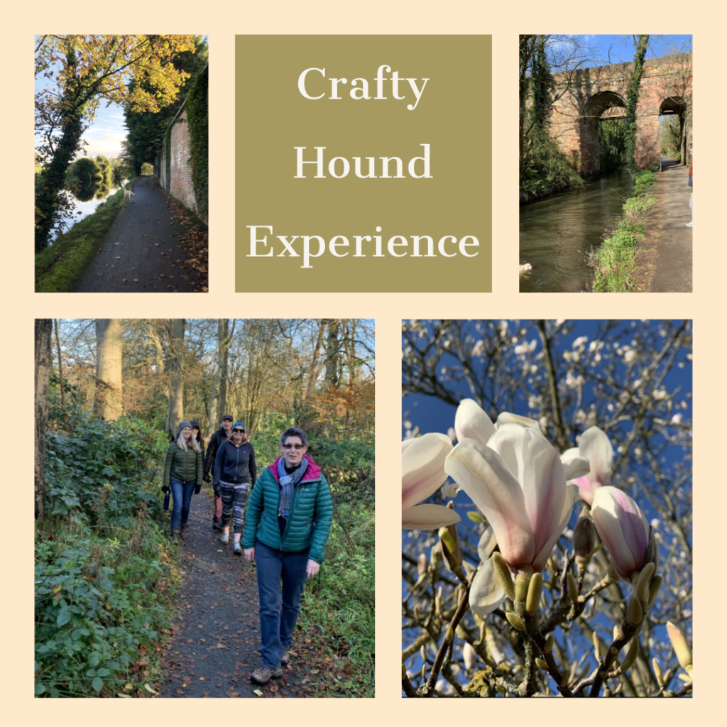 Crafty Hound & Lagan Valley Curated Walking Experience