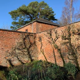 The walled garden walls