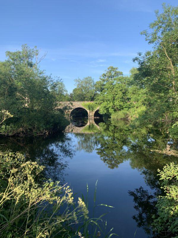 Tranquil Drum bridge